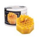 Wabenstück mit Biene